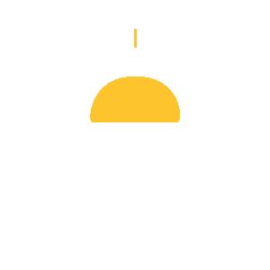 ccam-icon-member-government